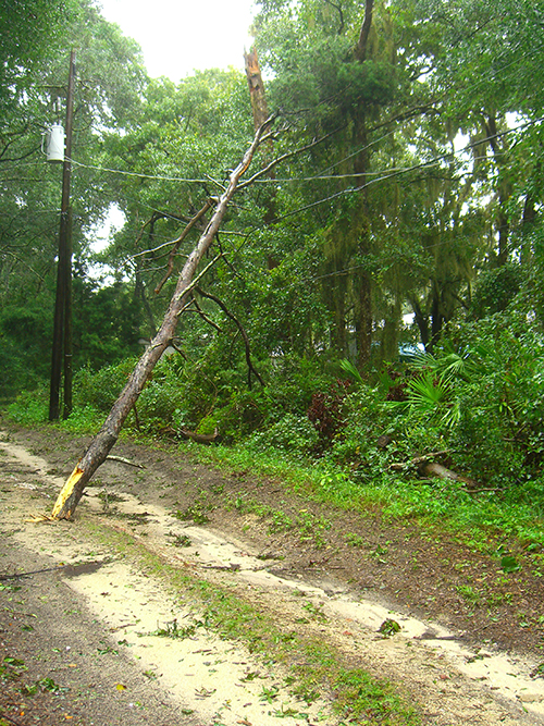Picture of Tropical Storm Fay damage in Saint Augustine