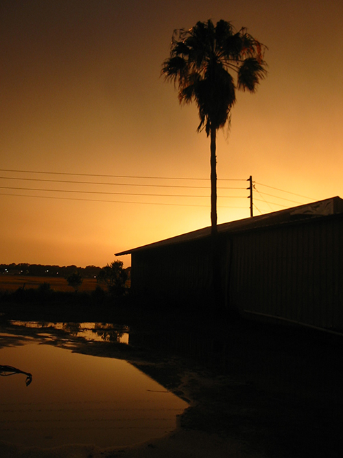 Riberia Sunset Picture