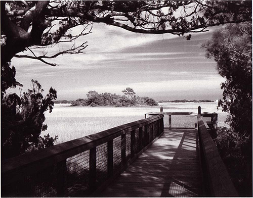 Fort Mose historic state park saint augustine picture