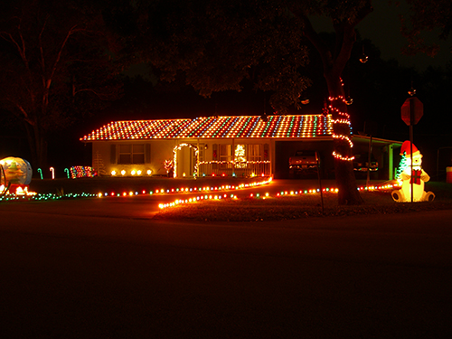 South Christmas Lights Picture