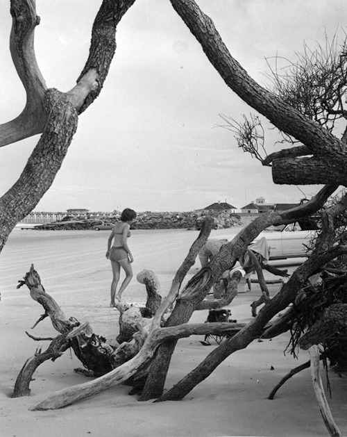 Picture of Bathers at Anastasia State Park (FA)