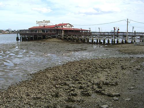 Santa Maria Low Tide Picture