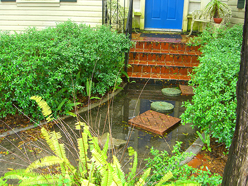 Marine St Blue Door Stepping Stones Picture