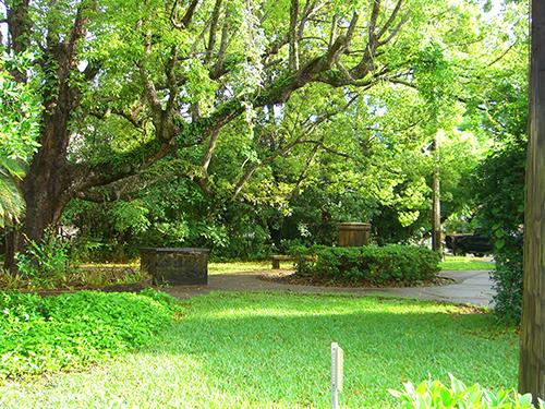 St. Francis Park Photo