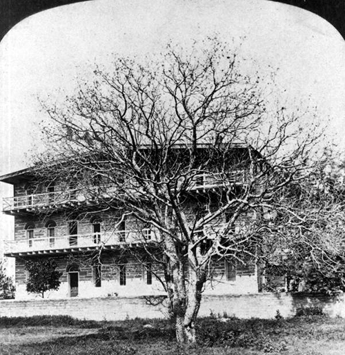 St. Mary's Catholic Convent Picture