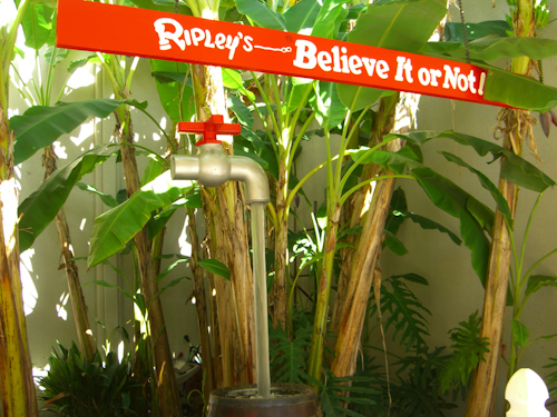 Ripley's Water Faucet Photo