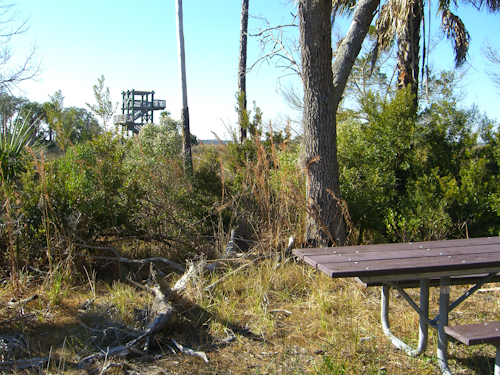 Guana State Park Picnic Table Picture