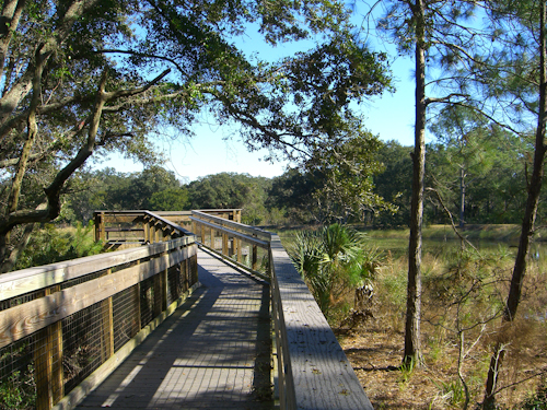 Guana Tolomato Matanzas National Estuarine Research Reserve Boardwalk Photo