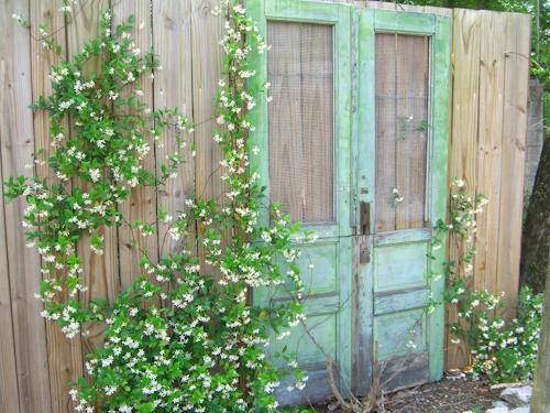 Bravo Lane Doors Pictures