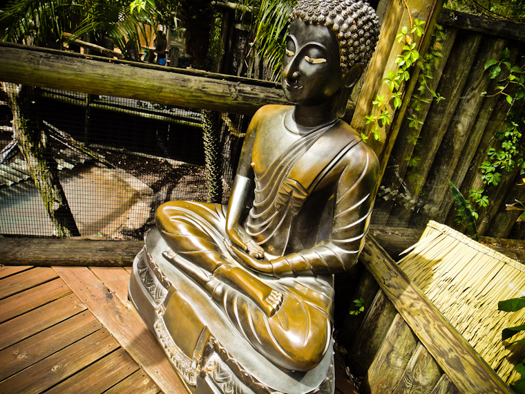 Photo of Sitting Bronze Buddha St Augustine Alligator Farm