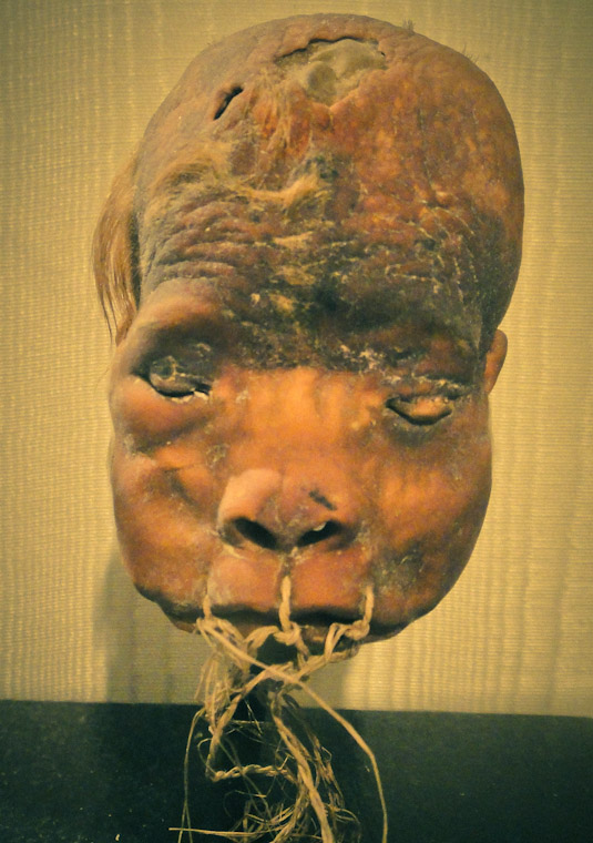 Shrunken Head at Lightner Museum in St Augustine Florida