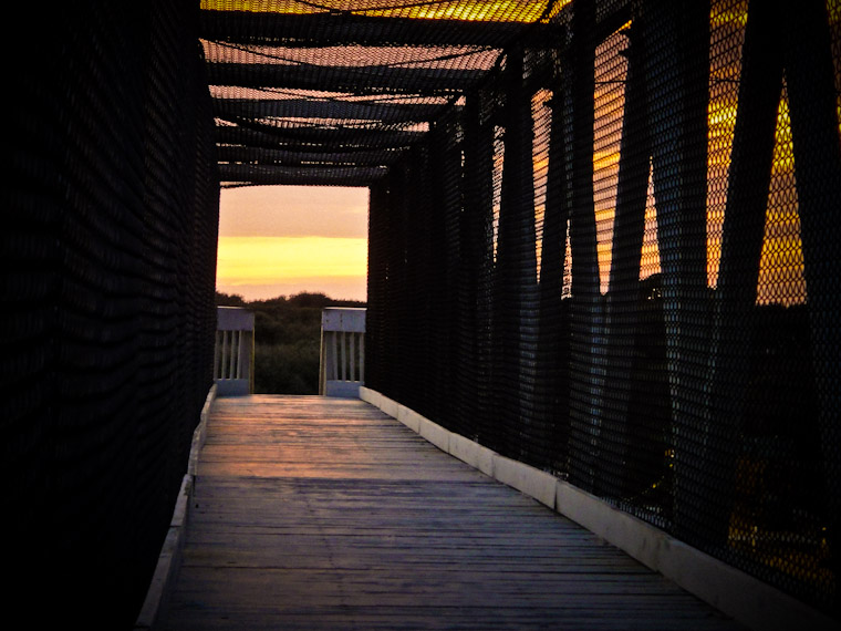 Bridge Walkway Sunset St Augustine Florida Picture