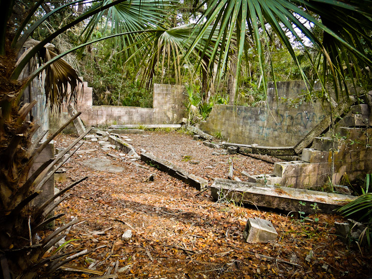 Building Remains in Woods St Augustine Florida Picture