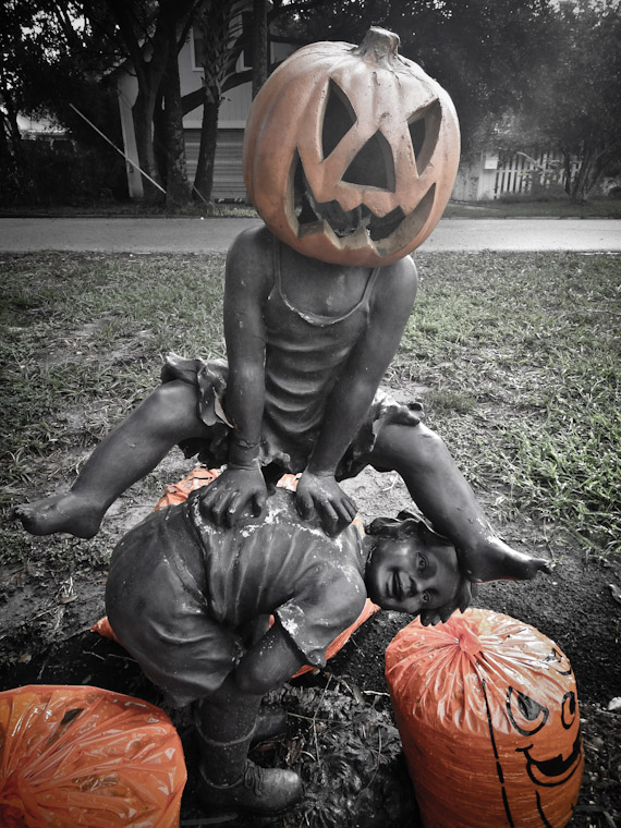 Picture of Jack-O-Lantern Leap frog in St Augustine Florida