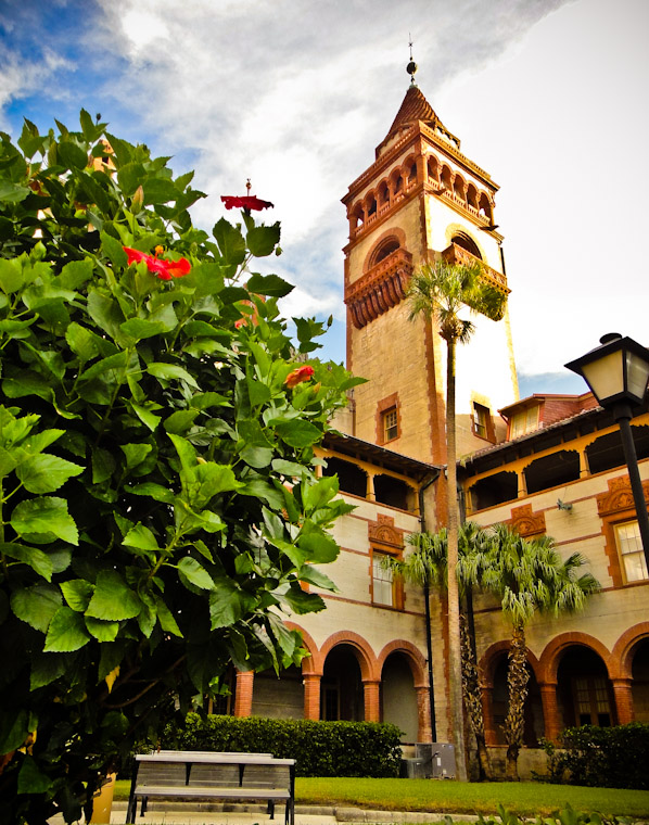 Photo of Flagler Tower Hibiscus in St Augustine Florida
