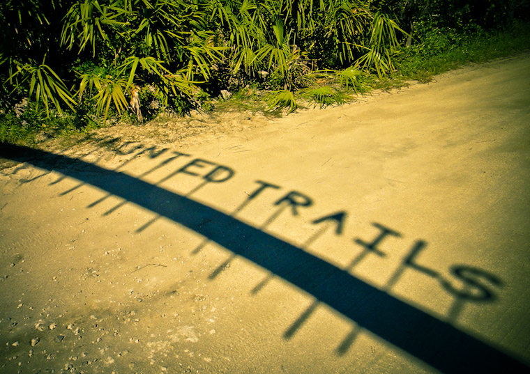 Photo of Haunted trails shadow in Flagler County Florida