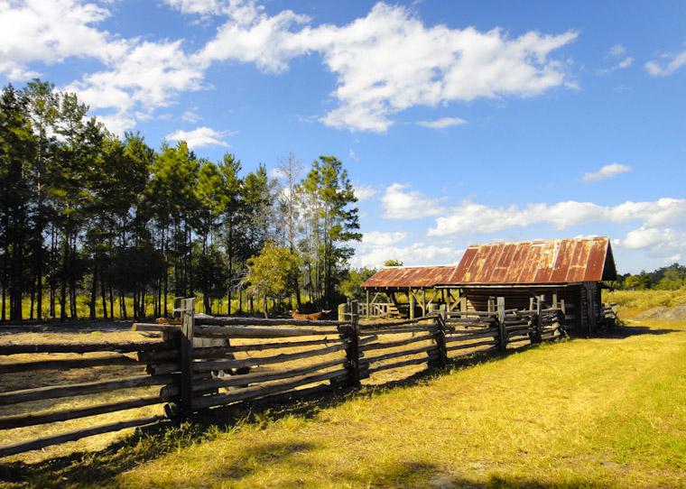 Photo of Florida Cracker Farm in Flagler County