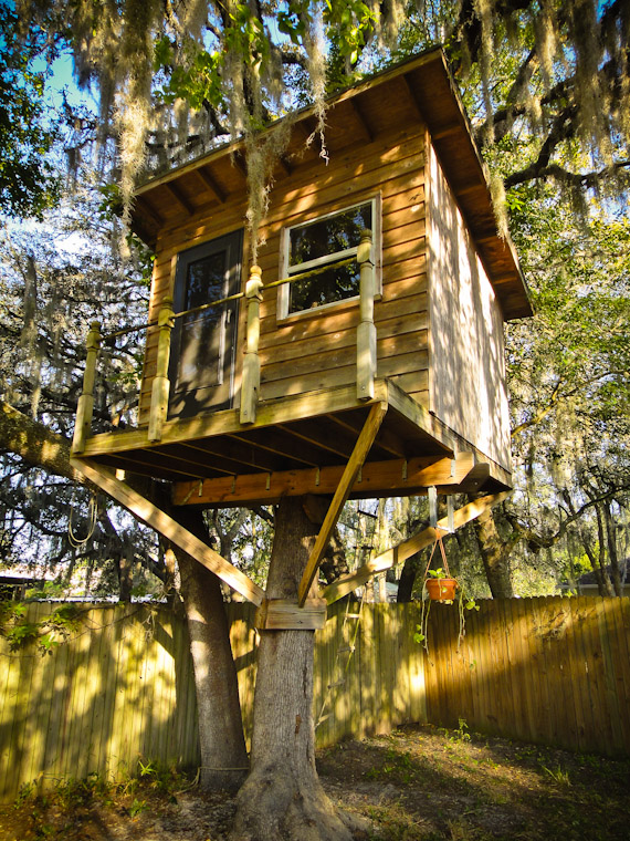 Picture of Treehouse in Sain Augustine Florida