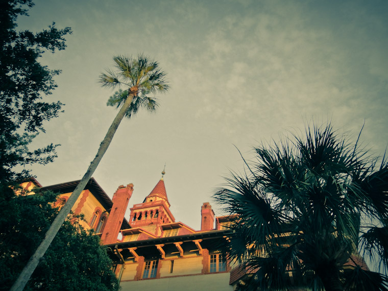 Picture of Flagler College and Palm Tree in St Augustine Florida