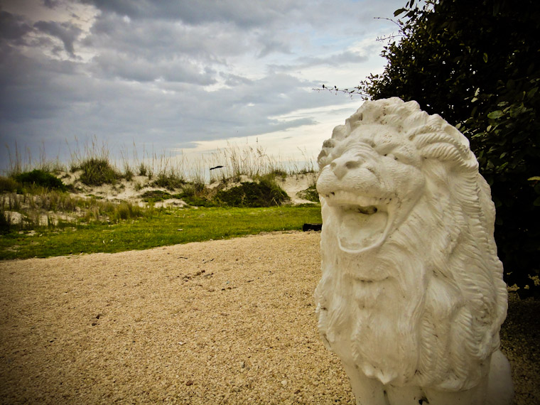 Photo of laughing lion at 12th street st augustine beach florida