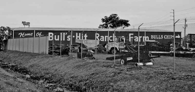 Bull's Hit Ranch Bull Chips in Florida
