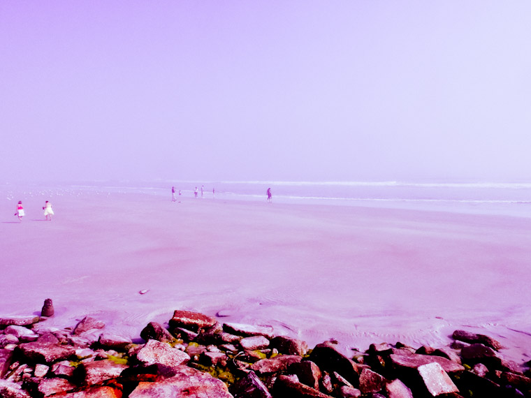 Photo of purple haze in Saint Augustine Florida