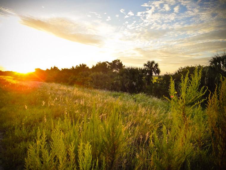 Guana sunrise run in saint augustine Florida