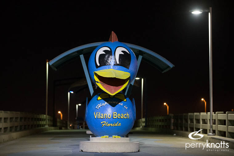 Happiness is Vilano Beach Blue Bird