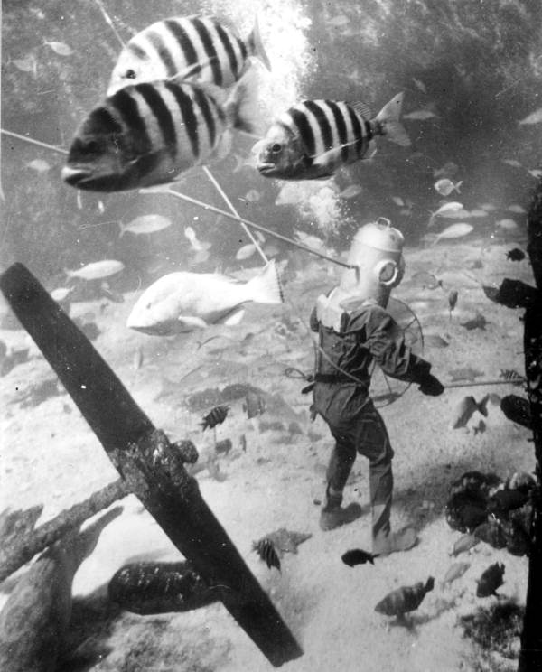 Marinland diver photo from 1946