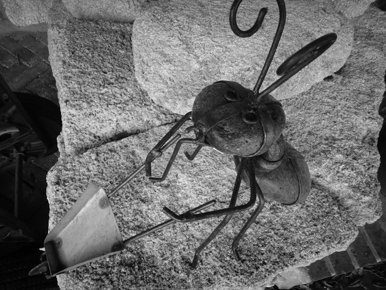 Picture of metal ant sculpture