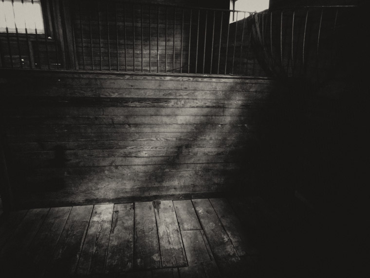 Princess Place horse barn shadows