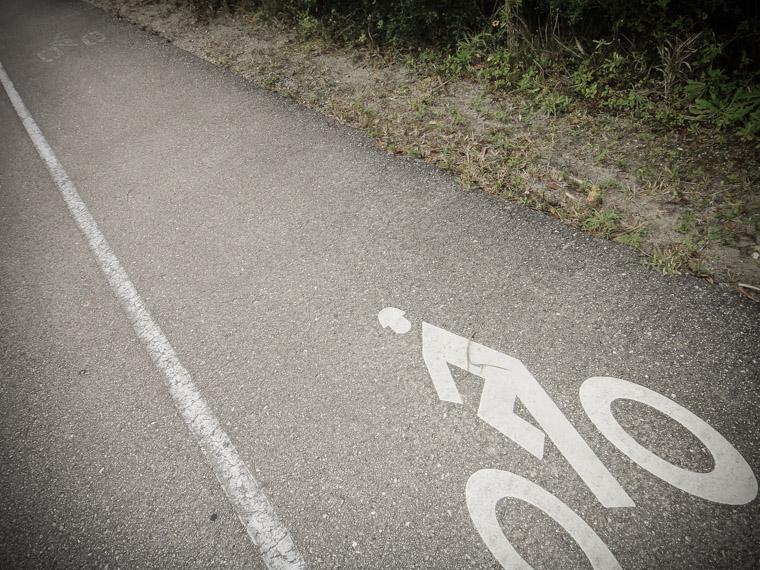 Bike Lane Symbol in Anastasia State Park