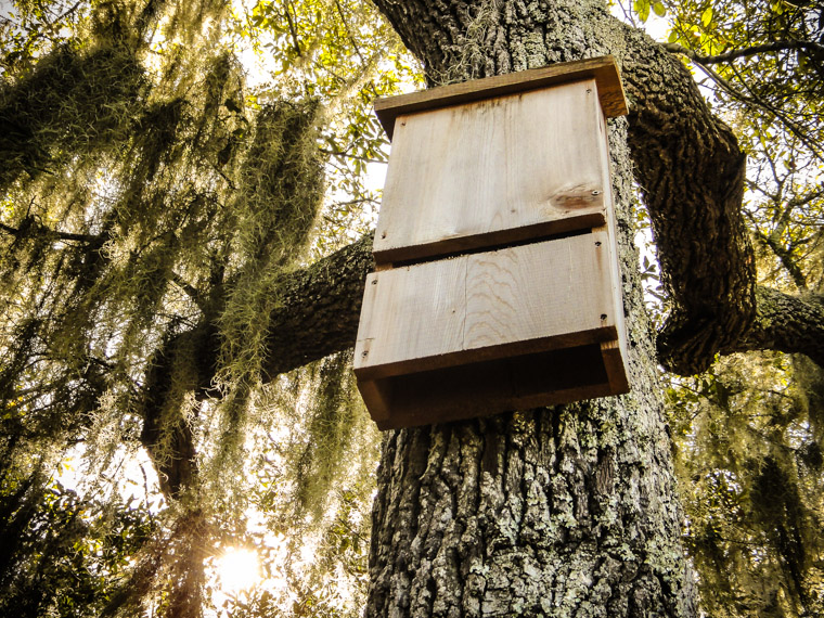 Picture of Moses Creek Bat House