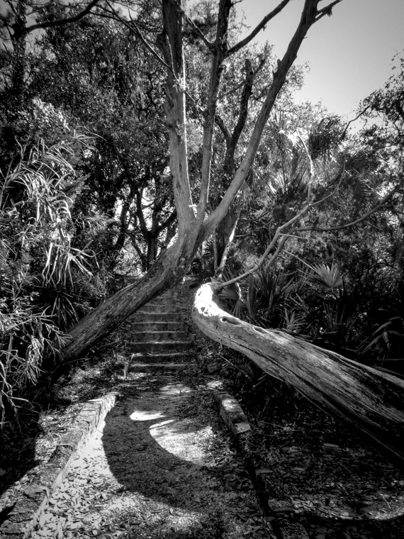 Trail steps at St Augustine Amphitheatre