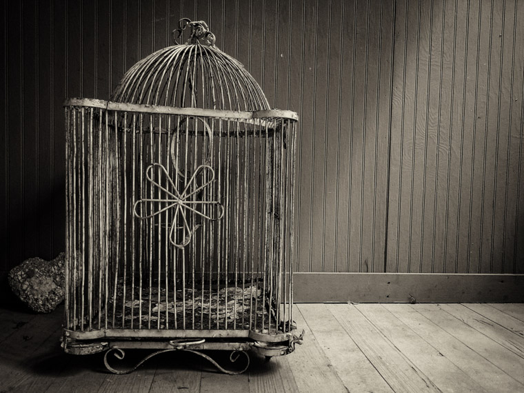 Vintage rusty birdcage at dow museum of historic houses