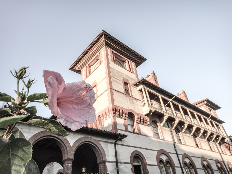 Flagler College Hibiscus Plant Hotel Ponce de Leon