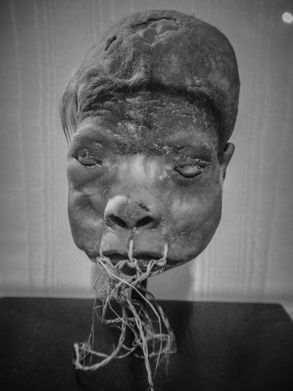 Shrunken Head at Lightner Museum