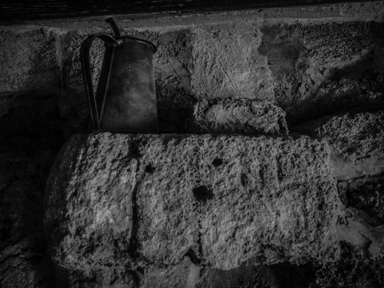 Fort Matanzas Mug Shelf