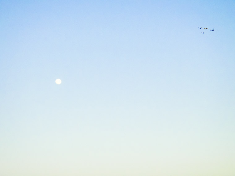 Airplane formation over moon sky