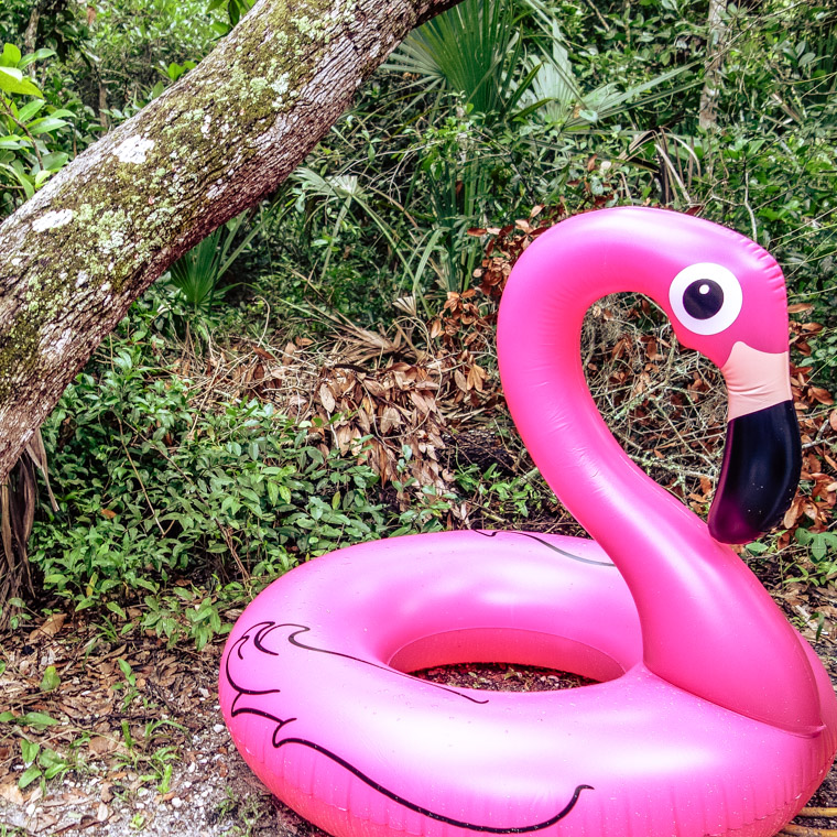 Flamingo float tubing