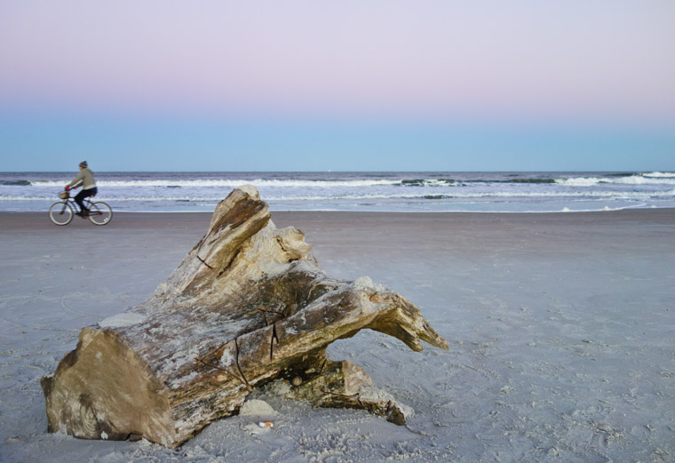 Tree stump washed up on beach at sunset with biker