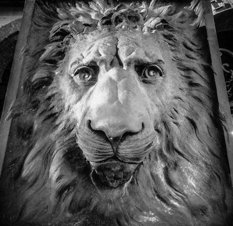 Flagler College Lion