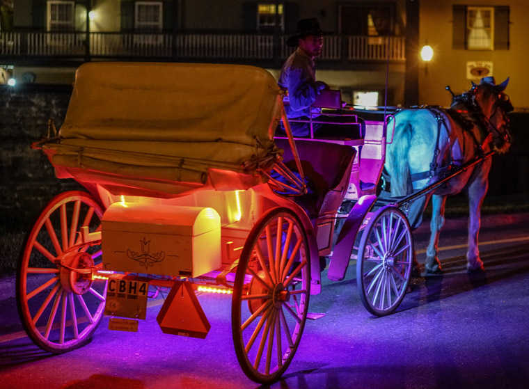Horse carriage tour at night