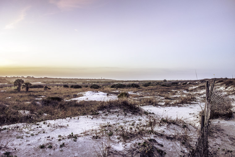 Anastasia State Park Beach Dunes