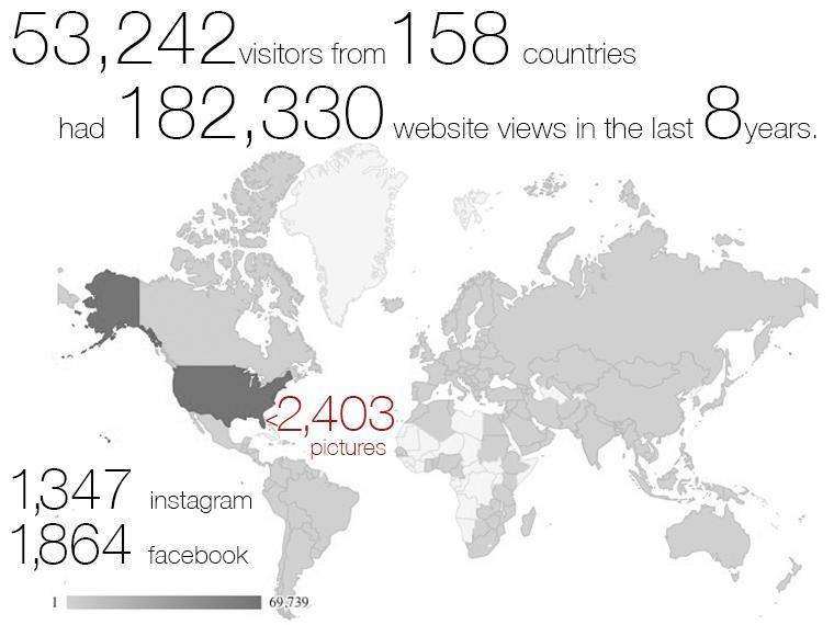 Stats on website views