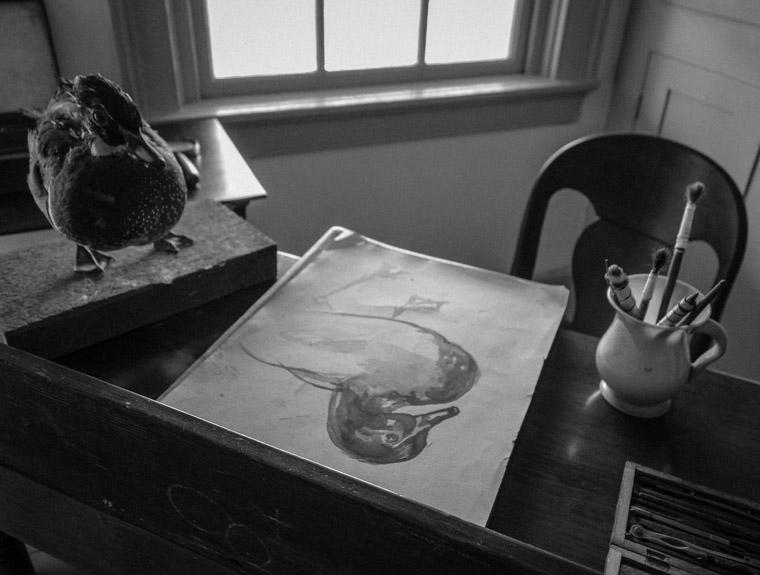 Ximenez-Fatio House duck art desk